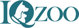 iqzoo-logo